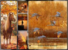 '' The last days of Autumn '' by Reyhan Seran Dursun