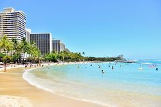 海外旅行初心者におすすめ!ワイキキ在住者が教えるハワイ~ワイキキ周辺で楽しむ~ホノルル観光スポット15選 | RETRIP[リトリップ]