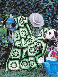 Lacy Stars Afghan free crochet green afghan pattern