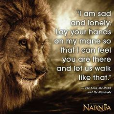 """Narnia. I love Aslan so much. """"I am sad and lonely. Lay your hands on my mane so that I can feel you are there, and let us walk like that."""""""
