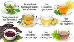 Чай способен на многое! Узнай, как влияют на организм разные виды этого напитка.  К чаю не стоит относиться легкомысленно! Это не только вкусный и ароматный напиток. В зависимости от компонентов, чай может действовать на твой организм по-разному. Поэтому всегда руководствуйся при выборе чая не только приятным запахом, цветом и вкусом: обращай внимание на действие состава чая. Учись правильно заваривать чай — слишком крепкий и концентрированный напиток может принести тебе вред, ведь во…