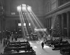 Christmas in Union Station by Chicago History Museum Chicago Christmas, Christmas History, Union Station Chicago, Old Train Station, Train Stations, Chicago River, Chicago Chicago, Chicago History Museum, Nostalgic Images