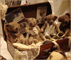 Vintage bear collection
