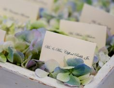 Seating card table, bed of flowers (+ a flower arrangement)