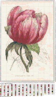 tulipan-tulipe-fleur-point de croix-cross stitch-embroidery