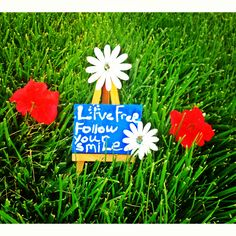 Our mini canvas sending out positive energy and inspirational quotes.