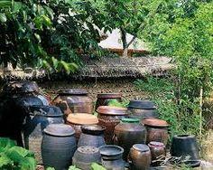 시골 풍경 사진에 대한 이미지 검색결과 Permaculture Design, Wild Flowers, Digital Art, Tropical, Landscape, Garden, Photography, House, Image