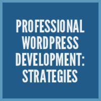 Professional WordPress Development: Strategies