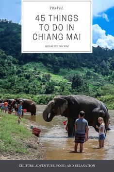 45 Things To Do In Chiang Mai, Thailand.   #travel #traveltips #thailand #chiangmai #travelblogger #traveller #amazingthailand  #travellist #bucketlist