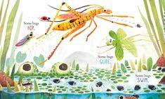 Amazon.com: Some Bugs (Classic Board Books) (9781481464444): Angela DiTerlizzi, Brendan Wenzel: Books