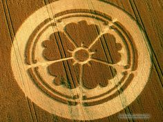 It is hard to argue that the making of crop formations is anything other than vandalism. Some farmers have claimed that the damage caused b. Crop Circles, Alien Art, Mysterious Places, Ufo, Nature, Farmers, Flags, Wallpapers, Collection