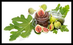 Fig Leaves Have Many Medicinal Properties Fig leaves are widely known for their healing properties. They can be used in the treatment ...