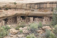 spruce tree house Mesa Verde Colorado- these ruins, made by the Anasazi indians (who are now extinct) are actually built high up on the cliffs, although this picture does not make them appear so.