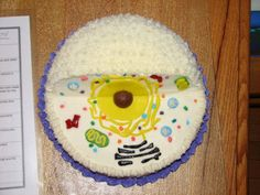 This is a cake made for a Science Project.  It shows the anatomy of an animal cell.  It is my 13-year-old's first attempt at decorating a cake.  I helped out.  The organelles are made of fondant and candy.