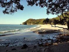 Orokawa Bay walk, Waihi Beach NZ