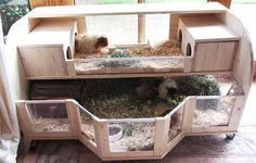 Make Your Own Guinea Pig Cage | http://abyssinianguineapigtips.com/make-guinea-pig-cage/