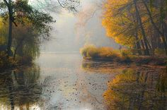 reminds me of New England idealized... beautiful light and water