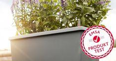 60 Tester stellen unsere CASA MESH & MY CITY GARDEN Blumenkasten auf die Probe! - https://produkttest.emsa.com/?view=social&type=test&id=665