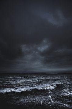 p e l a g i c • | the sea |