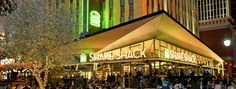 Shake shack in Vegas!!! Vegetarian choice (deep-fried portobello burger) kind of underwhelming...but a great place to go for a better quality fast food experience if you're craving.