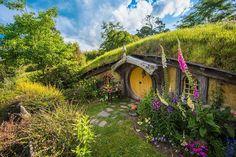 Visite o Hobbiton, o vilarejo de O Hobbit, na Nova Zelândia;