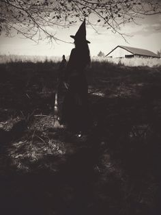 The Witch of Moondog Farm