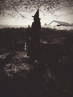 The Witch of Moondog Farm
