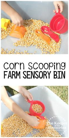 Corn Scooping Farm Preschool Monthly Theme Sensory Bin