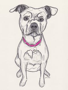 Any Breed Custom Pet Dog Portrait Pen and Ink 8x10 by UandTEmporium on Etsy https://www.etsy.com/listing/274149744/any-breed-custom-pet-dog-portrait-pen
