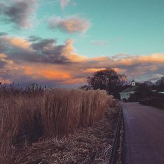 #London #sunset #travel #TrueBlondTravels