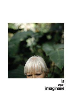 Delphine Schnydrig - La vue imaginaire.  Exposition du 16 au 29 juin 2015 - Fondation suisse / Pavillon Le Corbusier