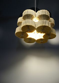 Licht leesvoer