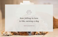 The ideal ceremony reading if you're having your dog at your wedding or a dog-themed wedding - 'How falling in love is like owning a dog' by Taylor Mali. Dog Wedding, Wedding Ideas, Wedding Ceremony Readings, Vivienne, Dog Friends, Falling In Love, Dog Lovers, Weddings, Dogs