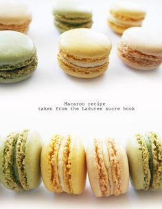 i bought the laduree sucre cook book a few months ago and have only used it once so i thought i better get it out and try some recipes, here is the macaron recipe they use in it. recipe for the macaron shells 2 cup + 1 tbsp ground almonds 2 cups + 1 … Köstliche Desserts, Dessert Recipes, French Macaroons, Laduree Macaroons, Macaroon Recipes, Cupcakes, Cookies Et Biscuits, Love Food, Tiramisu