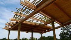 SAVANNA ENCLOSURE & PANORAMIC LOOKOUT / Location: Zoo Veszprém / Veszprém H-8200 Hungary / Project year 2012 / Project area: 1500+50 sqm Hungary, Architecture Design, Pergola, Outdoor Structures, Cabin, Studio, House Styles, Building, Projects
