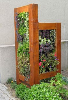 vertical garden bed, website recommends using wood pallets to separate the plants, start out horizontally for a few weeks, then when the roots are stable you can turn it vertically