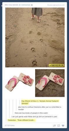 Animal Footprint Sandals…
