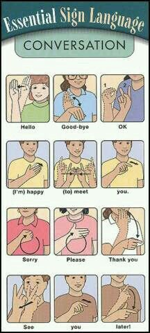 """Essential ASL Sign Language - for SASL (South African SL) please ignore the signs for """"good-bye"""", """"thank you"""" and """"later"""", the other signs are the same. Also the ASL sign for """"please"""" is the SASL sign for """"pleasure"""" Sign Language Words, Sign Language Alphabet, Learn Sign Language, American Sign Language, Sign Language Basics, English Sign Language, Australian Sign Language, Spanish Language, French Language"""