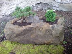kamenná korýtka