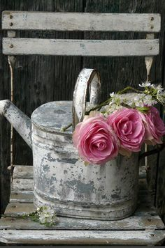 Weathered galvanised watering can and shocking pink roses - perfect!
