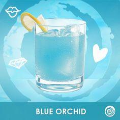 Is it time for yet? Blue Orchid: Hpnotiq, Premium Vanilla Vodka, A Splash of Orange Juice Hpnotiq Drinks, Alcoholic Drinks, Beverages, Cocktails, Vanilla Vodka, Blue Orchids, Tequila, Drink Recipes, Happy Hour