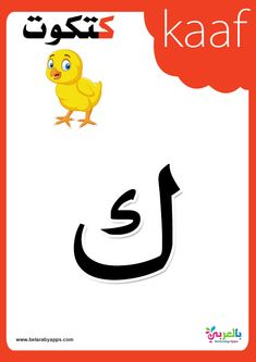Arabic alphabet flashcards printable coulerful - free Arabic alphabet poster printable - 28 Arabic Alphabet Cards for kindergarten Arabic Alphabet Letters, Arabic Alphabet For Kids, Alphabet Cards, Alphabet Coloring Pages, Alphabet Activities Kindergarten, Preschool Letters, Learning Activities, Teaching Resources, Free Printable Handwriting Worksheets