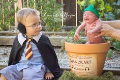 Every budding Harry Potter needs a screeching Mandrake. That is exactly what three-year-old Sebastian Oldfield got, but in the form of a baby brother. And we've got the adorable pictures to prove it. Putting a baby into a pot for a newborn photo shoot is Baby Harry Potter, Harry Potter Nursery, Theme Harry Potter, Harry Potter Baby Costume, Harry Potter Halloween Costumes, Newborn Pictures, Baby Pictures, Hogwarts, Book Bebe