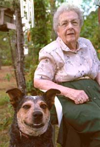"WOW>>this Australian Blue Heeler dog saved his 85 yr.old owner from a ALLIGATOR attack behind her home. Ruth Gay had fallen and a nearby gator was going towards her when ""BLUE"" her dog scared the gator away and  in 2001 Blue was given the ""dog hero of the year award"""