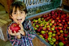 """""""A"""" is for Apple: What Kids Can Learn at the Grocery Store"""