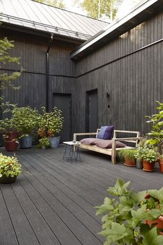 Moody deck and garden