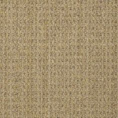 Ride It Out S E0475 Pale Shadow Carpet Amp Carpeting