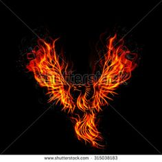 Fire burning Phoenix Bird with black background. vector