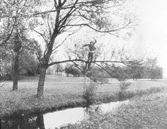 Bas Jan Ader, Broken Fall (Organic), 1971