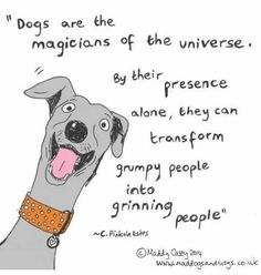 Dogs are the magicians of the universe. By their presence alone, they can transform grumpy people into grinning people.